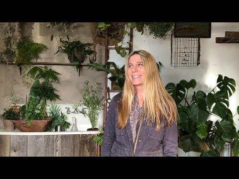 HOUSEPLANT TOUR | LIVING WITH INDOOR PLANTS