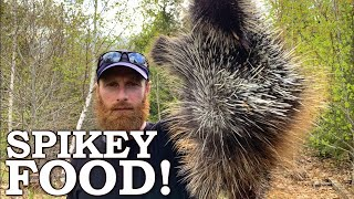How to Eat This MEATY Prickly Animal! | 100% WILD Food SURVIVAL Challenge