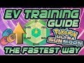 Fastest EV Training Guide + Best Locations in Pokemon Ultra Sun and Moon (USUM) - Bradrenaline