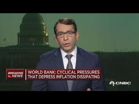 Global economy healthy despite persistent slowdown: World Bank's Ayhan Kose