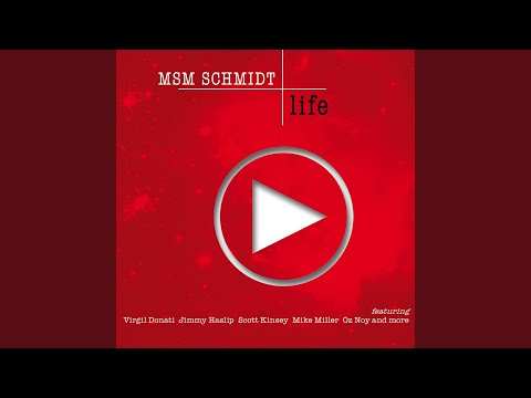 LIFE by MSM Schmidt is now for sale!