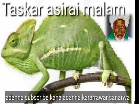 Download Maganin samun daukaka