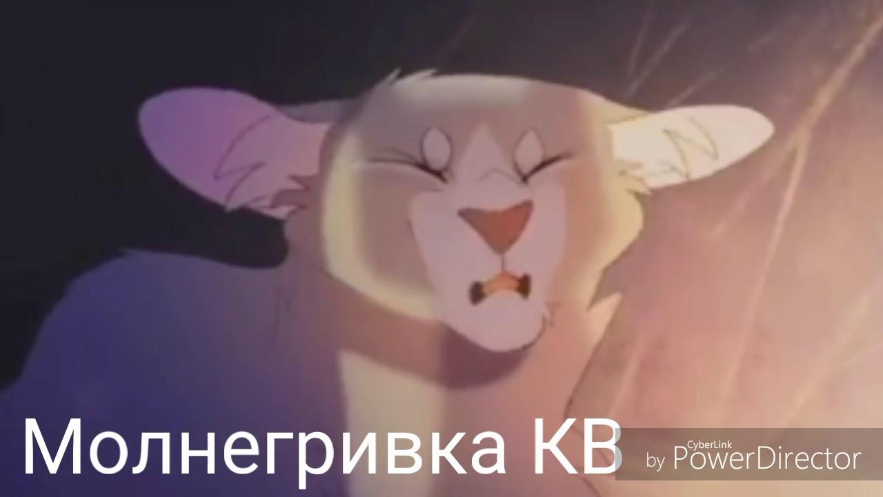 Квн песни про котов