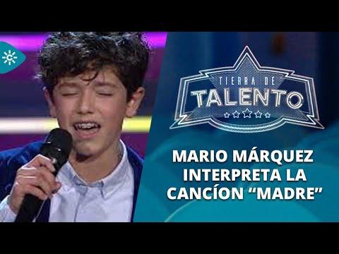 Mario Márquez hace llorar a India Martínez, José Mercé y hasta a su madre