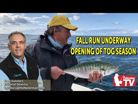 October 8, 2020 Long Island Fishing Report And Forecast With Fred Golofaro