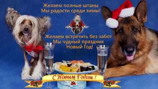 Новогодние анекдоты..Скоро Старый Новый год !!!