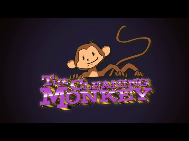 The Cleaning Monkey - How To Choose Your Carpet Cleaner