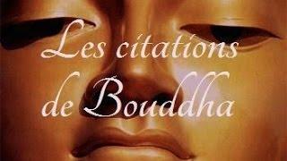 Les plus belles citations de Bouddha