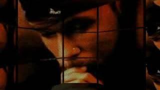 Donnie Wahlberg Video
