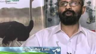 Pakistan Ostrich Company PakOstrich 6/7