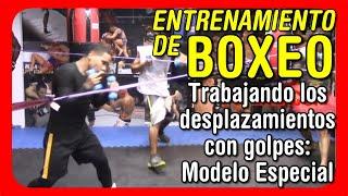 Entrenamiento de boxeo - Trabajando los desplazamientos con golpes: Modelo Especial