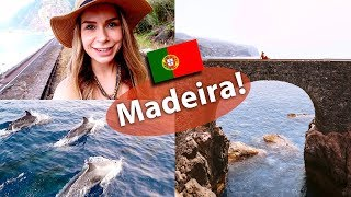 Madeira Island Travel Vlog! Dolphin watching & more