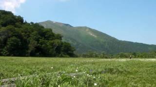 尾瀬 尾瀬ハイキング 鳩待峠尾瀬ヶ原往復 2010年7月8日