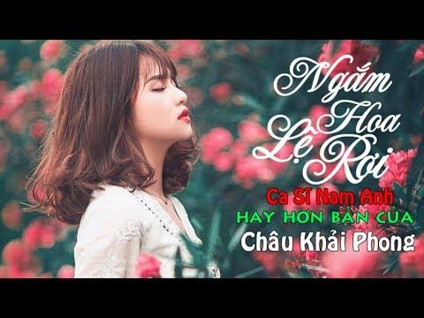 Việt Mix Ngắm Hoa Lệ Rơi Remix