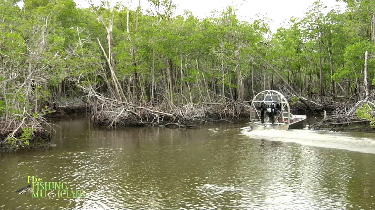 Florida everglades offshore fishing with capt charles for Chokoloskee fishing report