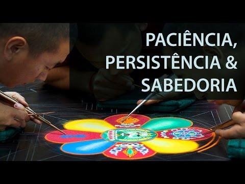 Paciência, persistência e sabedoria