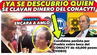 """Desaparecen dinero del Conacyt y culpan a AMLO """"Panista se lo cląva"""""""