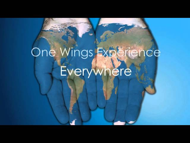 Wings Travel Management: One Company. One Relationship. One Wings Experience Everywhere.