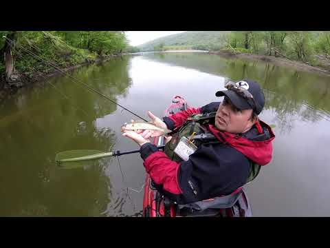 Susquehanna River Kayak Fishing with Friends from Ohio - 5/12/18