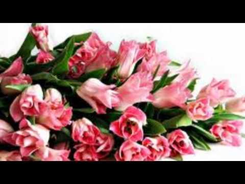 Моя - песня для всех женщин к 8 марта скачать песню композицию
