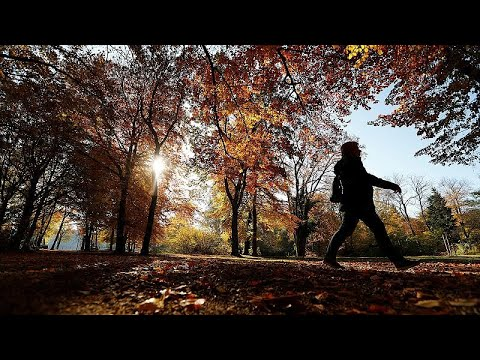 تشرين الثاني/نوفمبر شهد ارتفاعاً بنسبة ثاني أوكسيد الكربون وفي درجة الحرارة…  - نشر قبل 2 ساعة