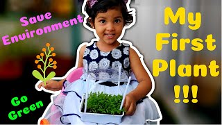 DIY Growing Plants | 3 years Old Growing Plant | My First Plant | Gardening with Toddlers