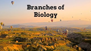 Branches of Biology | Pathology and Medical Branches |