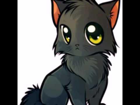 аниме фото котов