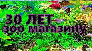 Зоомагазин в Литве. Огромный выбор. Профи советы и помощь в аквариумах.