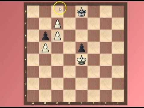 Day 100 Bonus Simple Pawn Endgame
