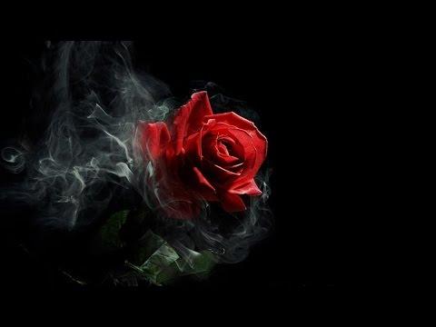 Single Rose Wallpaper Hd Emotional Gothic Music Scarlet Rose Youtube