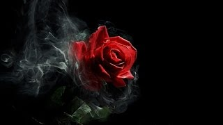 Emotional Gothic Music - Scarlet Rose
