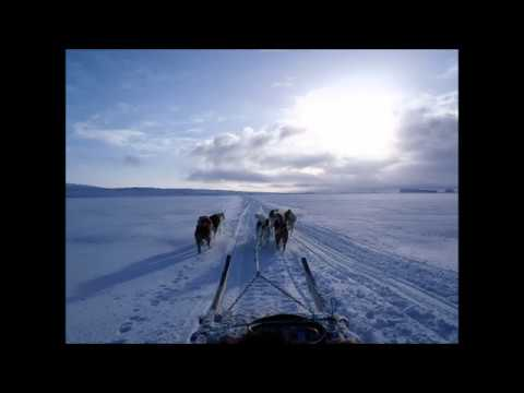 Dogs and Snow in Greenland - Ittoqqortoormiit