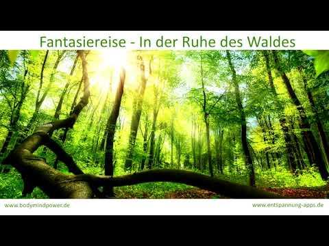 Fantasiereise - In der Ruhe des Waldes - herrlich entspannen oder einschlafen (Vollversion)