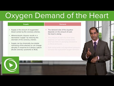 Oxygen Demand of the Heart: Supply & Demand Mismatch – Cardiovascular Pathology | Lecturio