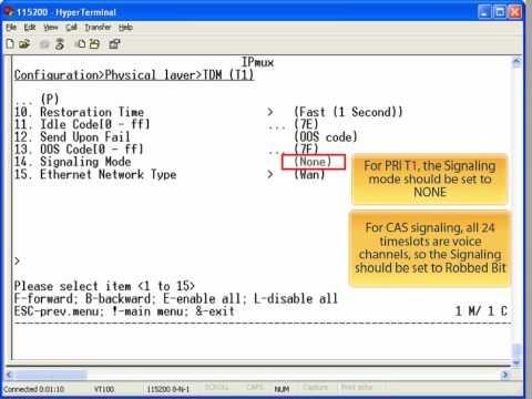 RAD IPmux Configuration Guide - North America