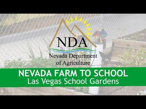Growing Gardens in Las Vegas