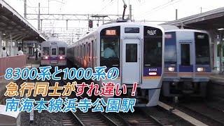 8300系と1000系の急行同士がすれ違い!南海本線浜寺公園駅