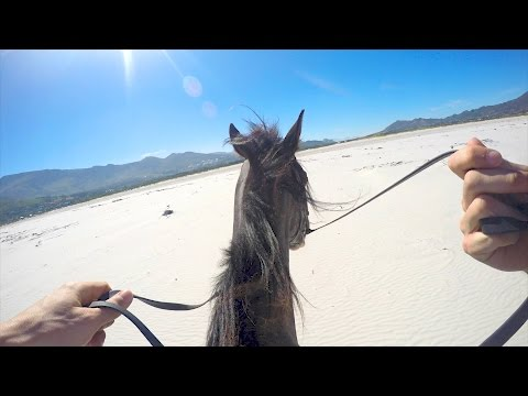 Almost Got Bucked Off While Horseback Riding In South Africa Part 2