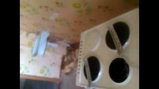 Ремонт 3-х комфорочной электрической плиты.(, 2012-08-26T08:13:15.000Z)