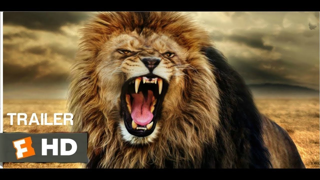 lion king 2019 soundtrack - simba u2019s theme