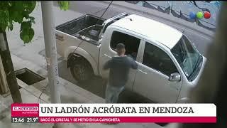 Ladrón acróbata en Mendoza
