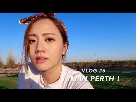 MyplatformM Vlog #6 travel time! Australia, Perth.