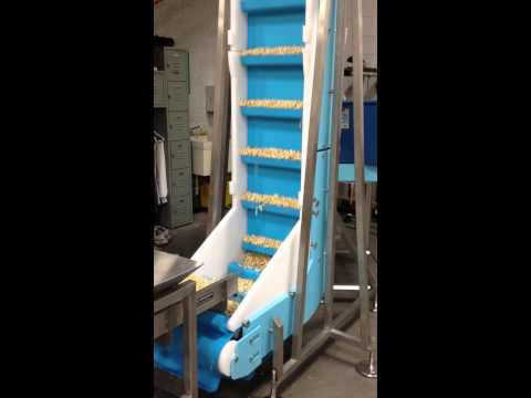DynaClean Vertical Z Food Conveyor with Vibratory Feeder