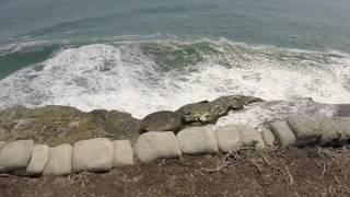 США 4106: Гуляем вдоль океана - есть что посмотреть
