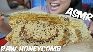 ASMR EXTREME RAW & FRESH Honeycomb (STICKY EATING SOUNDS) No Talking | SAS-ASMR *Part 3*