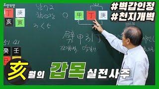 [중급] 32강 - 亥월의 갑목 실전사주🌵