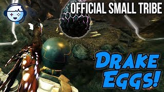 Getting First Drake Eggs! | Small Tribe PVP Official | ARK: Survival Evolved | Ep6