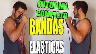 ejercicios con bandas elasticas tutorial completo para brazos triceps hombros piernas espalda y mas