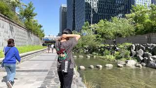Seoul Walk♂️Walking Cheonggye…